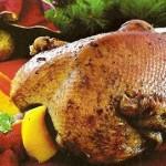 Special Italian Festive Goose